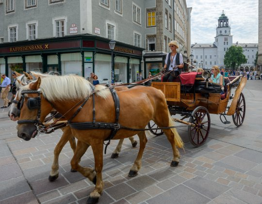 Bavarian Day Tours Salzburg Horse-Drawn Carriage